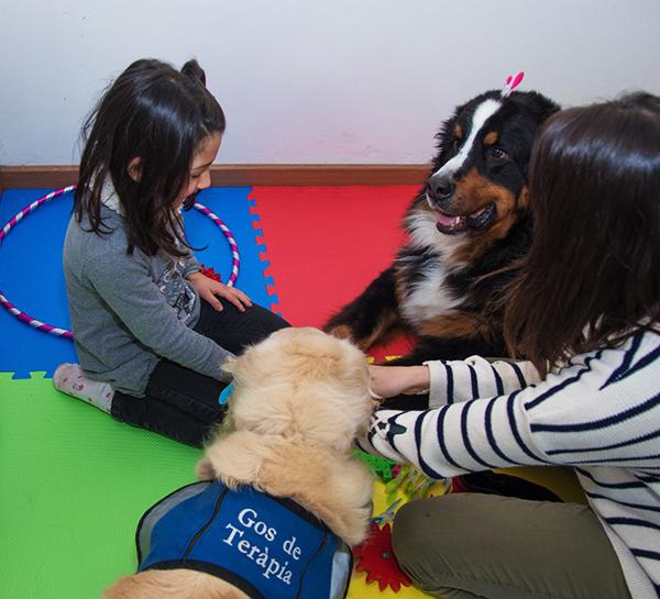 Terapia asistida per gossos. TAA