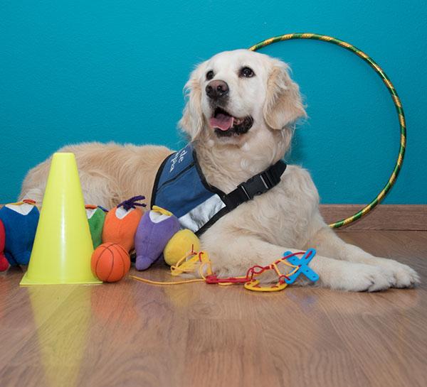 GNÒSIC - Teràpia assistida amb gossos - Centre de Psicologia a Palamós